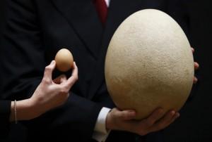 29.8.2014_Σε δημοπρασία το μεγαλύτερο αυγό του κόσμου
