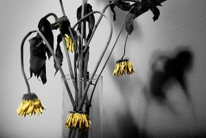 31.8.2014_Τοξικοί άνθρωποι βγάλτε τους από τη ζωή σας