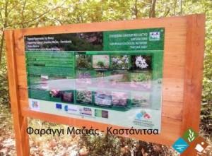 24.9.2014_Εγκατάσταση πληροφοριακών πινακίδων στην περιοχή όρους Πάρνωνα και υγροτόπου Μουστού_Μαζιά