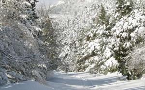 3.11.2014_Βαρύς χειμώνας με πολύ κρύο προβλέπεται στην Ελλάδα