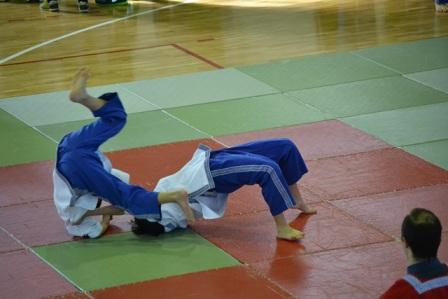 19.2.2015_Πελοποννησιακό Πρωτάθλημα Παγκρατίου Αθλήματος στους Μολάους_1