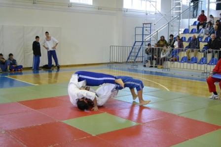 19.2.2015_Πελοποννησιακό Πρωτάθλημα Παγκρατίου Αθλήματος στους Μολάους_2