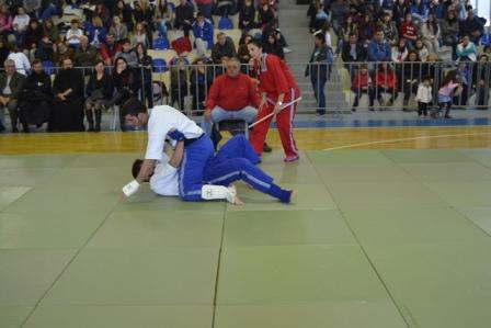 19.2.2015_Πελοποννησιακό Πρωτάθλημα Παγκρατίου Αθλήματος στους Μολάους_4