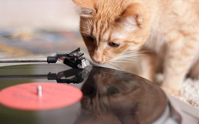 12.3.2015_Το βινύλιο ζει και βασιλεύει στο «Vinyl is back»