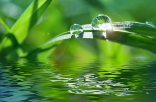 22.3.2015_Παγκόσμια ημέρα για το Νερό