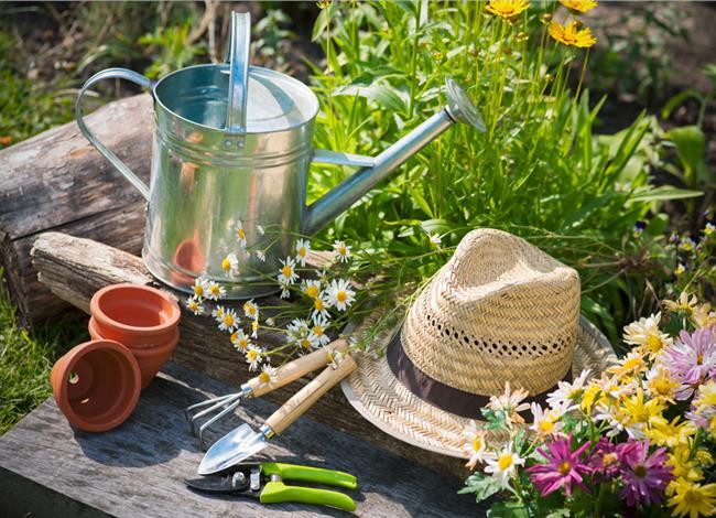 7.4.2015_Garden Therapy  καλλιεργήστε το δικό σας φαρμακείο