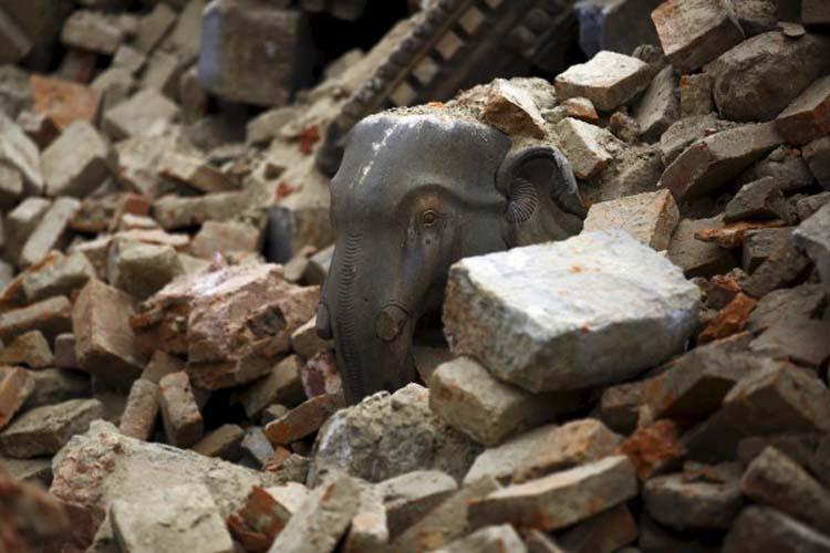 3.5.2015_Νεπάλ τρεις άνθρωποι ζωντανοί στα ερείπια οκτώ ημέρες μετά τον σεισμό