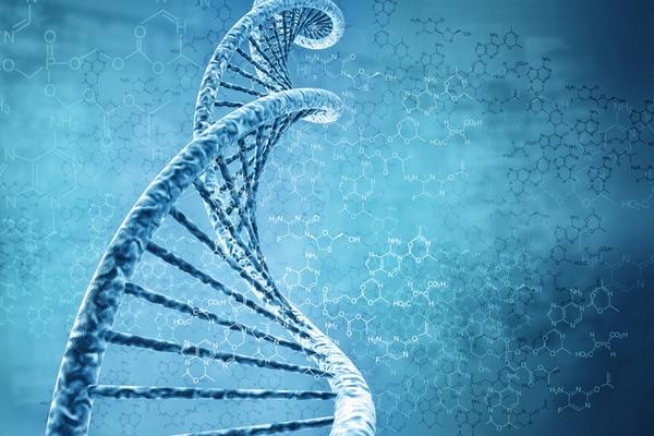 13.6.2015_Πόσο ζυγίζει το DNA όλων των οργανισμών της Γης;