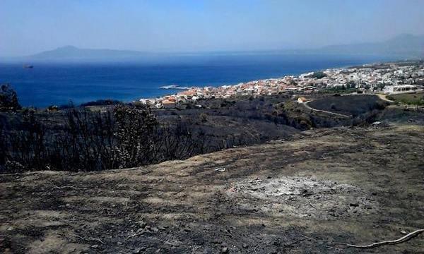 18.7.2015_Οι πρώτες εκτιμήσεις των ζημιών από την πυρκαγιά στην Νεάπολη_1