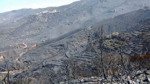 18.7.2015_Σε ύφεση η πυρκαγιά στη Νεάπολη Λακωνίας_3