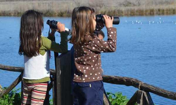 19.1.2016_Εκδήλωση παρατήρησης άγριας ορνιθοπανίδας στον υγρότοπο Μουστού