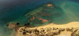 Υποβρύχιες ξεναγήσεις στο Παυλοπέτρι από το Δήμο Ελαφονήσου