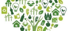 Περιβαλλοντική εκπαίδευση από το ΚΠΕ Μολάων