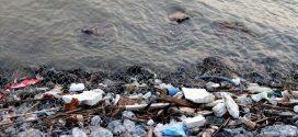Έως και 2,4 εκατομμύρια τόνοι πλαστικών καταλήγουν στους ωκεανούς από τα ποτάμια κάθε χρόνο