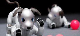 Η Sony «ανέστησε» τον, προικισμένο με τεχνητή νοημοσύνη, ρομποτικό της σκύλο, AIBO