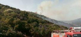Φωτιά ξέσπασε χθες στα Λιρά Λακωνίας