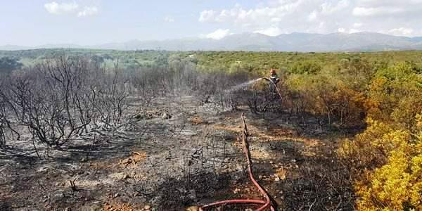 Άλλη μια φωτιά κατασβέστηκε στις Γούβες Λακωνίας…