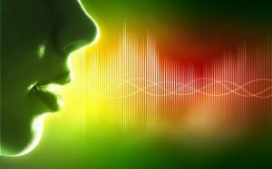 5.5.2014_Αναζητώντας την κατανόηση της άνθρωπινης γλώσσας