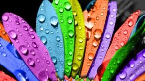 31.7.2014_Ποια χρώματα σε ανεβάζουν και ποια σε ρίχνουν ψυχολογικά