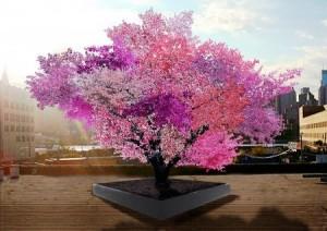 4.8.2014_Δέντρο-Φρανκενστάιν παράγει 40 διαφορετικούς καρπούς και γίνεται έργο τέχνης