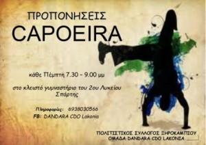 11.11.2014_Προπονήσεις Capoeira από τον Πολιτιστικό Σύλλογο Ξηροκαμπίου