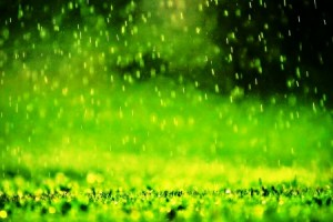 16.1.2015_Γιατί μυρίζει η βροχή και πότε η οσμή είναι εντονότερη;