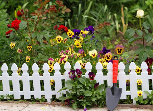 17.4.2015_Φτιάχνοντας έναν φράχτη με φυτά!