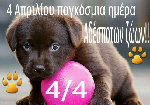 4.4.2015_Παγκόσμια ημέρα αδεσπότων ζώων