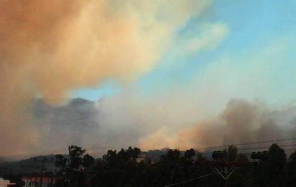 17.7.2015_Σε εξέλιξη η πυρκαγιά στη Νεάπολη Λακωνίας_3