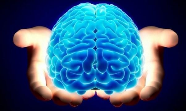 29.12.2015_Βρέθηκε ο μηχανισμός που ξυπνά τον εγκέφαλο από τον ύπνο