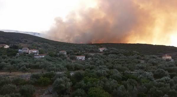 21.7.2016_Υπό έλεγχο η πυρκαγιά που ξέσπασε σε Τάλαντα Άγιο Νικόλαο και Λιρά Μονεμβασίας_2