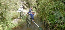 Δράσεις για τη διατήρηση ειδών ιχθυοπανίδας στον ποταμό Ευρώτα